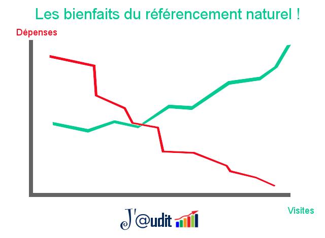 Optimisation du référencement naturel Jaudit.fr